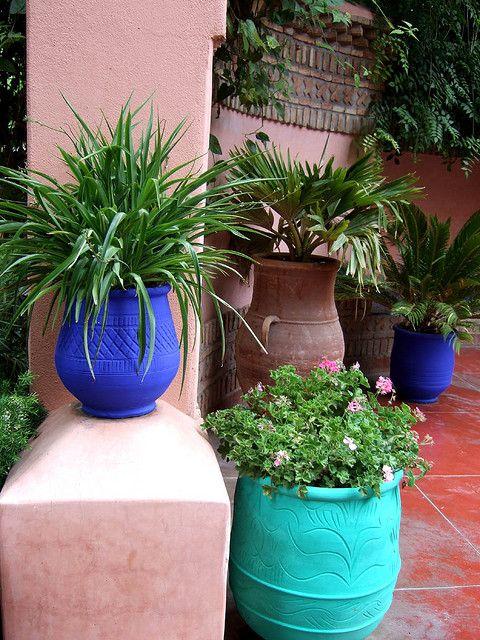 Majorelle Garden in Marrakech, Morocco. www.facebook.com/Welcome.Morocco