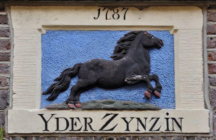 EERSTE BLOEMDWARSSTRAAT 3 Gevelsteen met hollend paard. Onderschrift YDER ZIJN ZIN 1787. De oudst bewaarde koop/verkoopakte betreffende dit pand is van 16 juli 1658 als de gemachtigden van de weduwe Renske Sanders ½ part van het huis verkopen. Zij was de weduwe van Hendrick Carstiaensz, beroep linnenwever. In 1723 verkopen de erven van Teunis Gerritsz Schilderink (hij was de koper in 1658 en waarschijnlijk ook eigenaar van het andere ½ part van huis en erf), het pand en ene Albert Nieuhof...