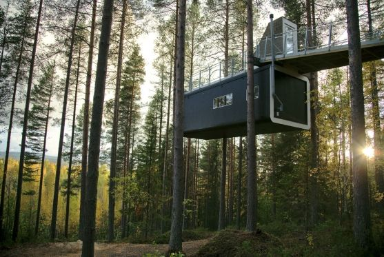 """The """"Tree Hotel"""" in Sweden. Photography : Elisabeth Toll."""