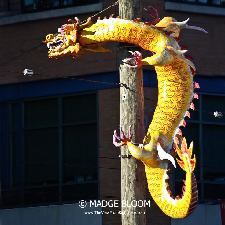 This dragon on a power pole protects Chinatown, Seattle