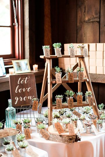 Best 200 Our Romantic Wedding At Grace Winery Images On Pinterest