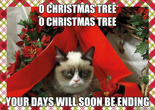 grumpy cat meme christmas tree - photo #4