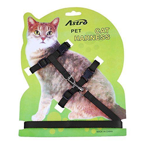 Pecute – Laisse pour chat en nylon réglable: Brand New and High Quality Nylon lead and Harness for your cat or Pet Adjustable Harness…