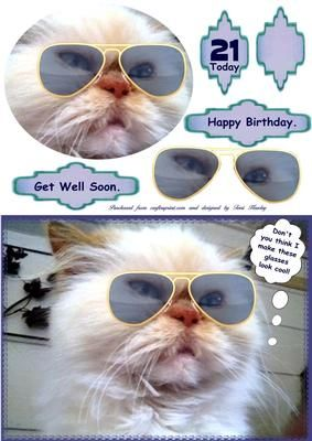 A cute card to send for many resons, It does have labels for, get well soon and Happy birthday, and a 21 today, and a blank to add your own age.  it can be sent to male or female,