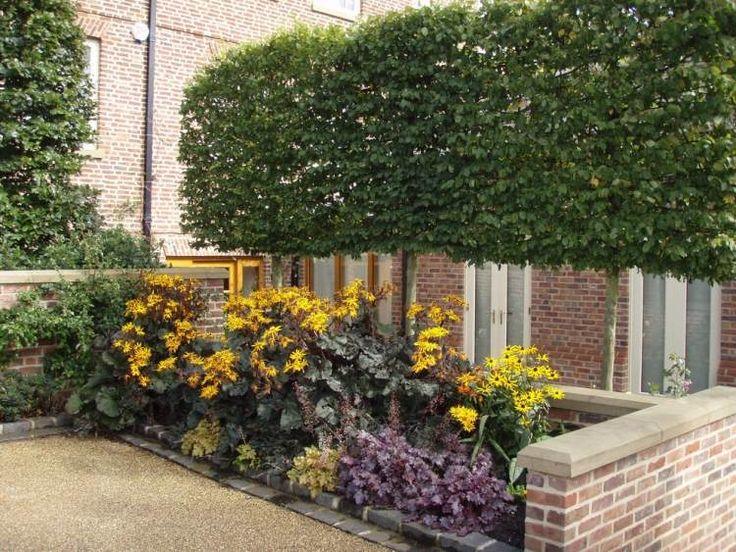229 best jardin autour de l 39 arbre images on pinterest - Arbre pour petit jardin ville colombes ...