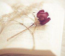 Вдохновляющая картинка фоны, книги, классическое, деликатно, мечтательный, цветочный, цветок, цветы, гранж, хипстер, инди, кружево, природа, пастельные тона, фотография, розовый, романтично, роза, урбан, винтаж, искусство на стенах, обои, 2405909 - Размер 500x333px - Найдите картинки на Ваш вкус