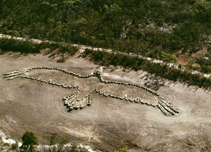 Andrew Rogers, Bunjil You Yangs National Park, Victoria, 2006 100m wingspan x 80m depth 38 deg 07' 11.89 deg S 144 deg 20' 20.07 deg E