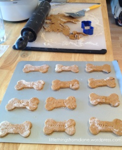 Easy Pumpkin Dog Treat Recipe - fun to make for neighbor dogs during the holidays!