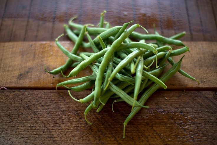 BUSH BLUE LAKE 274 BEAN (53 days) - Pinetree Garden Seeds - Vegetables