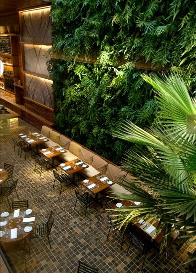 Again, I love the idea of incorporating a significant amount of foliage in to the bar if we can manage it with low-light plants