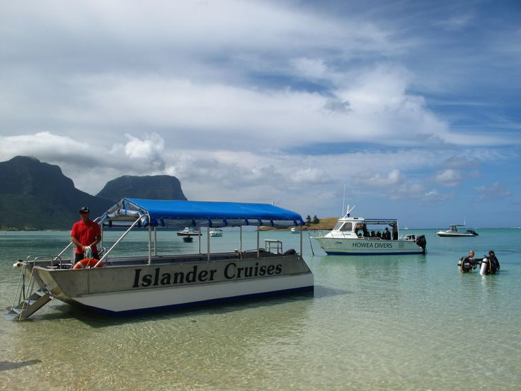 Head out on a glass bottom boat or dive boat!  www.lordhoweisland.info