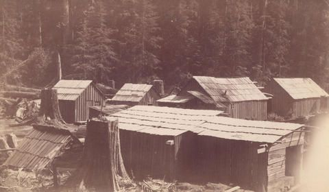[Logging camp in Kitsilano] 1890 - City of Vancouver Archives