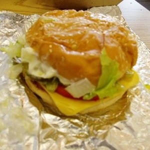 Five Guys Veggie Burgers