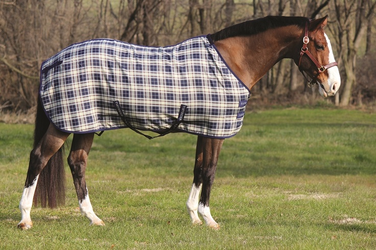 Tuffrider Horse Plaid Stable Sheet In Navy Burgundy