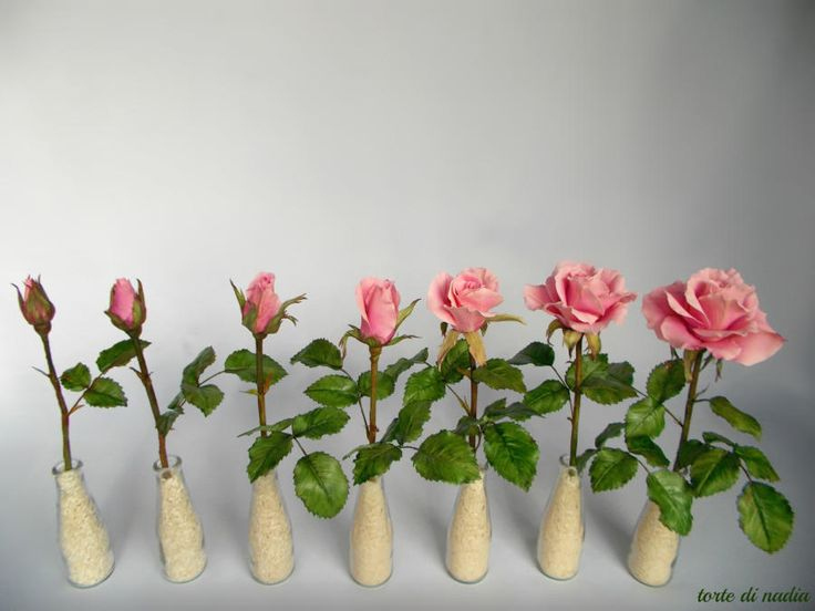 sugar roses by tortedinadia of CakesDecor.    From bud to fully open rose in steps.