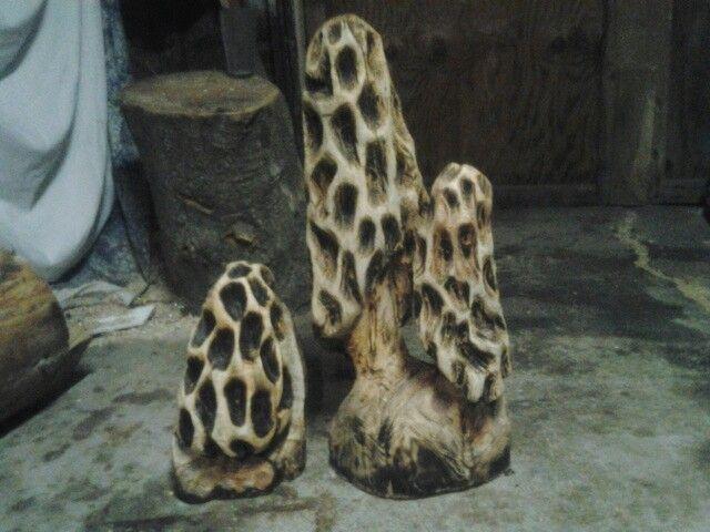 Best images about morel mushroom crafts on pinterest