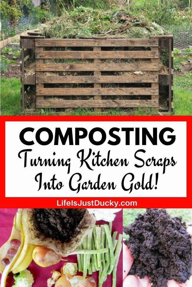 Small Vegetable Garden Tips