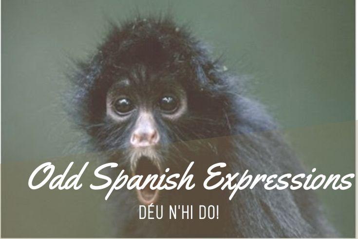 Odd Catalan Expressions: Déu N'hi Do! - https://bcn4u.com/odd-catalan-expressions-deu-nhi-do/