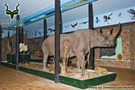 KNP - Berg-en-dal - Rhino Hall