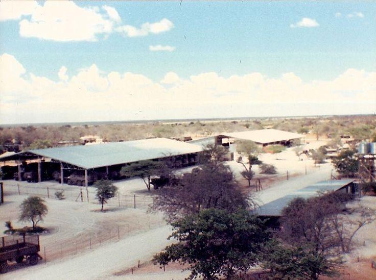 61 Mech base