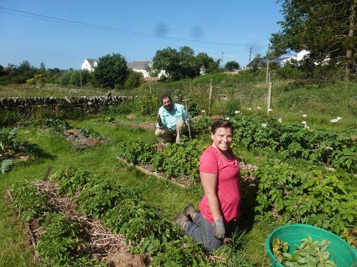 53 best intentional, agri community images on Pinterest | Little ...