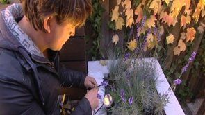Eindresultaat Eigen Huis & Tuin | Strakke tuin | Tuinverlichting | Wandlamp CURV | onderwaterspot SUB | Buitenspot SCOPE