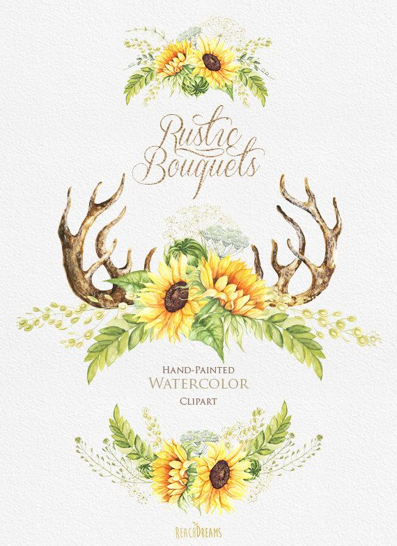 Watercolor rustic bouquets sunflower with horns wild
