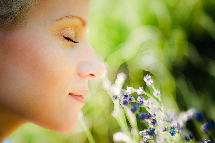 Wil je lekker ontspannen, dan kunnen bepaalde geuren daar heel goed bij helpen. Geuren koppel je namelijk onbewust aan een gevoel, zoals vrolijk, gestrest of relaxed. Door de geur van appeltaart voelt je huis bijvoorbeeld aangenaam, gastvrij en gezellig aan. Welke geuren zorgen ervoor dat je je thuis ontspannen voelt? In een onderzoek van International …
