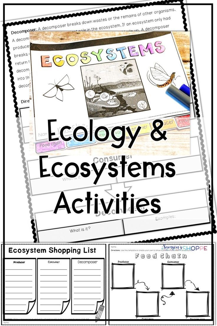 Ecology And Ecosystem Reading And Activity Ecosystems Elementary School Activities Life Science Activities