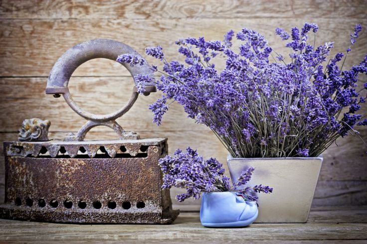 Beneficios de la lavanda seca - IMujer