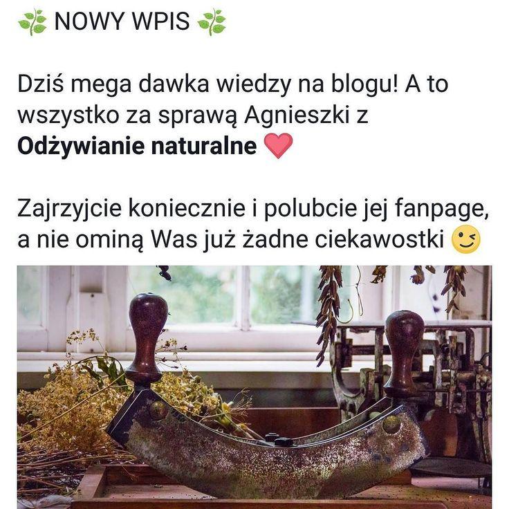 Wychodźcie na bloga i korzystajcie! Agnieszka z odzywianienaturalne.pl podzieliła się z nami swoją wiedzą na temat zioł  #zioła #ziołolecznictwo #herbs #herb #medical #medicalherbs #medicine #alternatywne #health #zdrowie #kakaludek #polska #poznan #poznań #poland