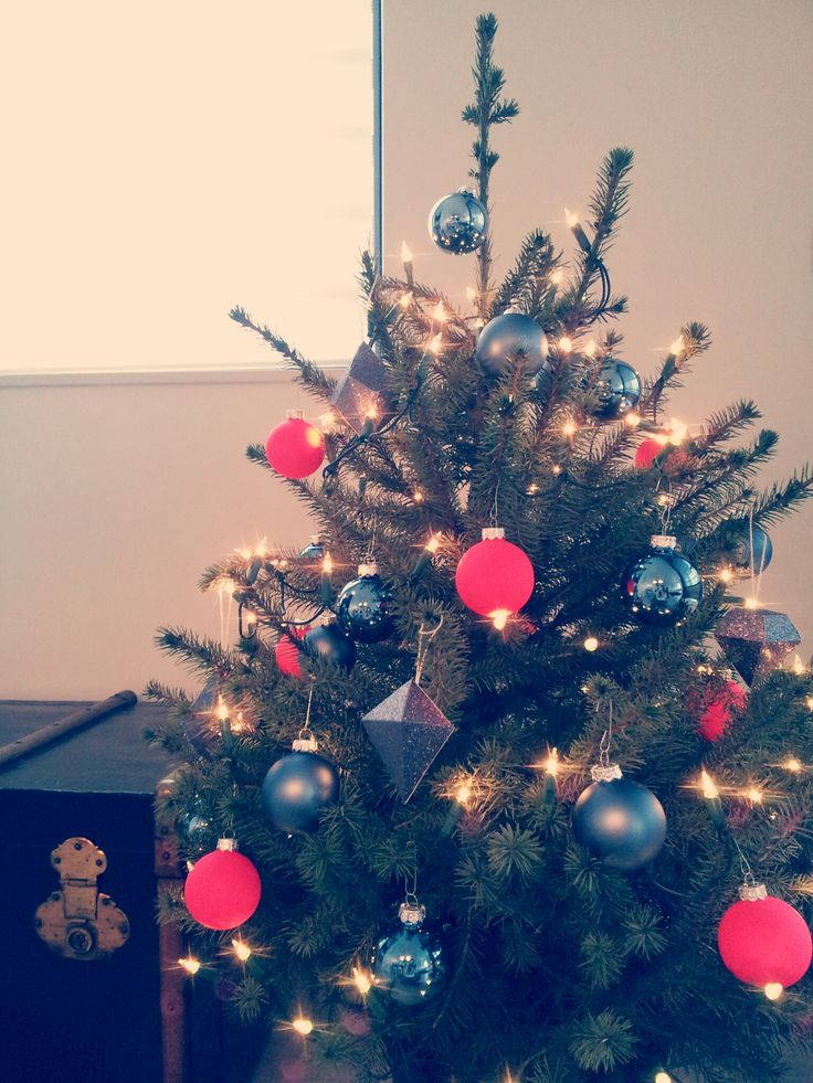 Christmas tree | Kerstboom