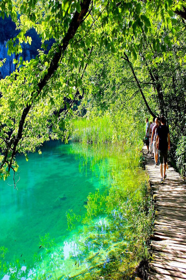 Walk the plank in Plitvice Lakes Croatia - a UNESCO world heritage site.