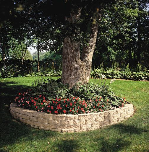 Front Yard Accent Stone Retaining Wall Around Tree: Large Tree Surround Retaining Wall