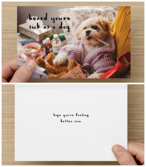 "The Frumpy Dog Get Well Soon Card: ""I heard you've been sick as a dog. Hope you feel better soon"""