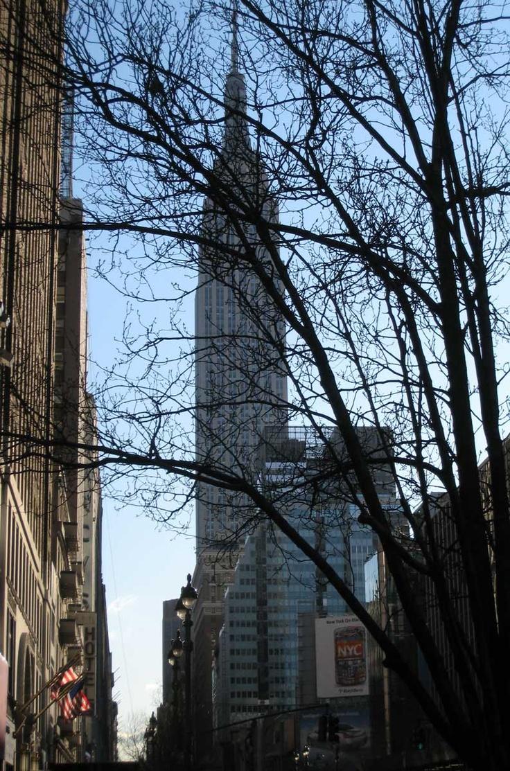 NYC 2009.1