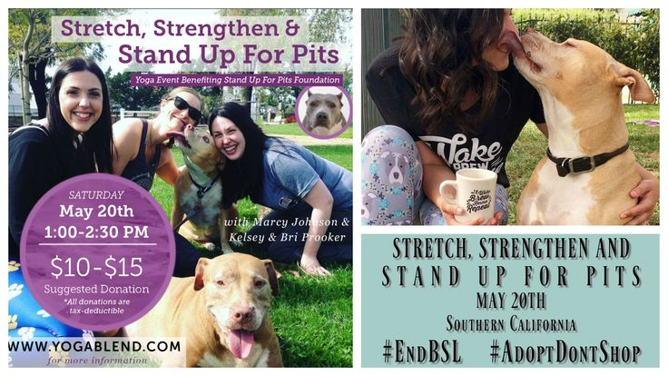 Inhale, Exhale, and Help Save Precious Pit Bulls! | Positively Woof | Stretch, Strengthen And Stand Up For Pits charity yoga event benefiting the Stand Up For Pits Foundation, organized by Pit Bulls and Personal Branding co-founders Bri Prooker and Kelsey Prooker