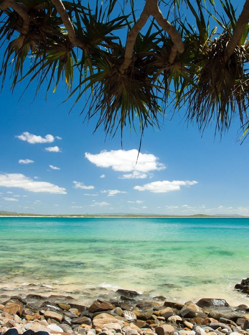 The Sunshine Coast's Best Beaches #1 Tea Tree Bay Quite possibly the most attractive slice of sand...
