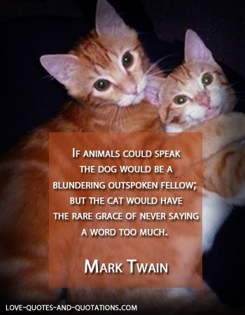 For the love of cats  http://www.love-quotes-and-quotations.com/cat-love-quotes.html  #catlovequotes