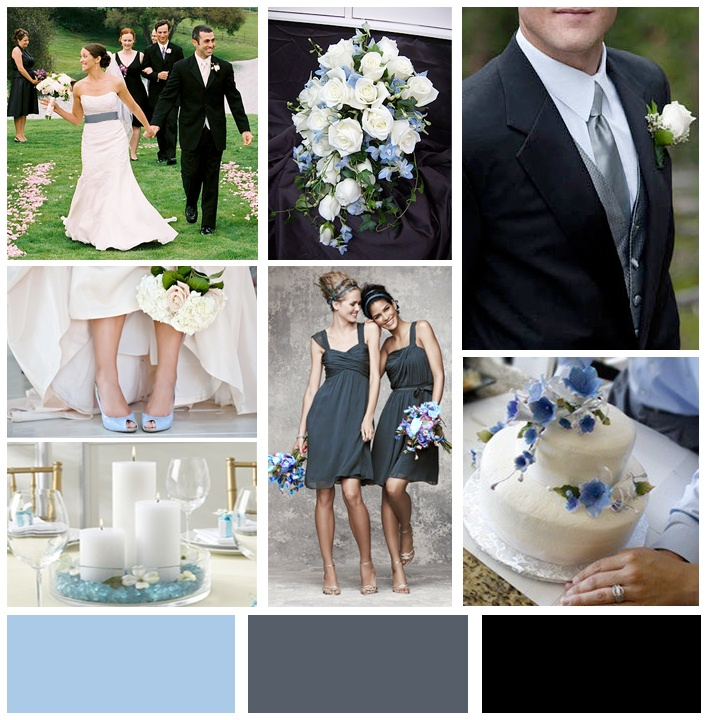 Baby Blue Dark Grey Wedding Palette