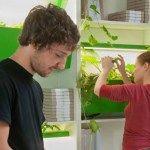 """ドイツ北西部の都市ハンブルクにある大学、ブラウンシュヴァイク造形美術大学の生徒シャーロットさん(Charlotte Dieckmann)がデザインした菜園「Parasite Farm」は、直訳すると""""寄生菜園""""。あまりやさしい名前ではないですが(笑)、「家庭にもっと手軽に菜園スペースを」という想いは伝わってきます。"""