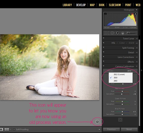 3 Simple Steps to Using Your Lightroom 3 Pretty Presets in Lightroom 4   Pretty Presets for Lightroom