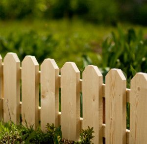 Short Pickets Backyard Fences Fence Landscaping