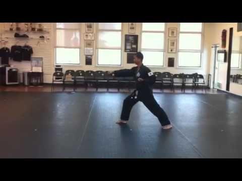 World Tang Soo do form #1