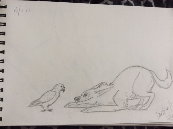 My parrot and me; drawing by ArtWolf