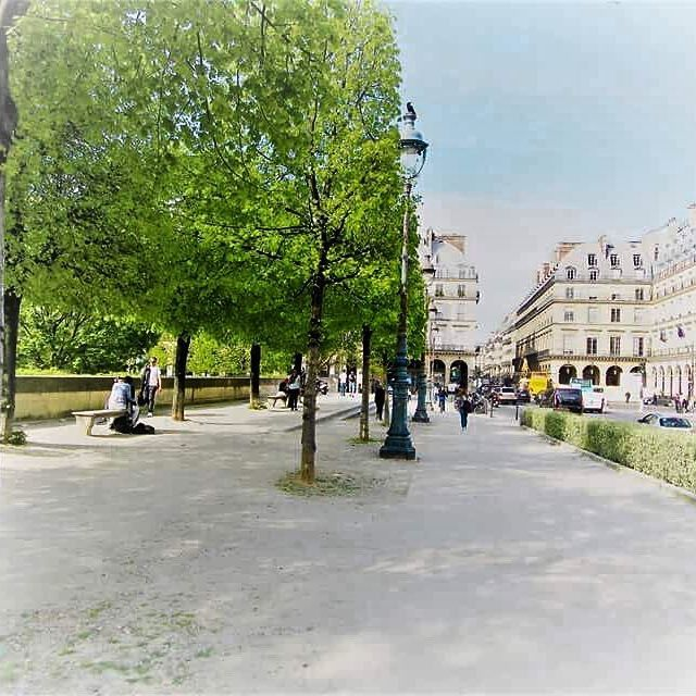 🇫🇷Jardin des Tuileries #paris #france #travel #explore #jardin #gardens #jardindestuileries #spring #april #lake #relax #momentsintime #melbournelifelovetravel #visitparis #visitfrance #beautiful #whitelight
