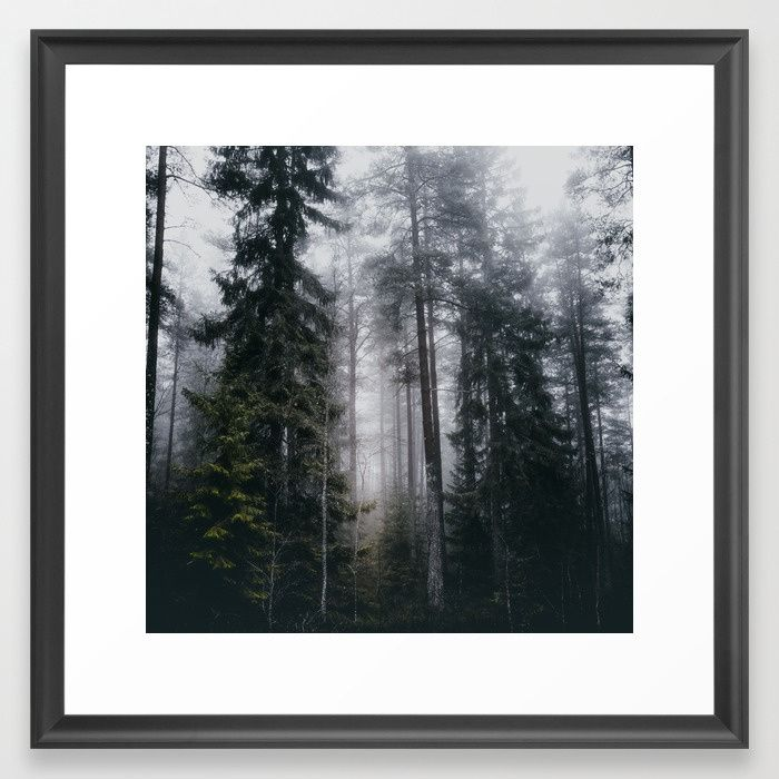 Into the forest we go Framed Art Print by HappyMelvin. #nature #forest #wanderlust #mystic #fog #artprint #framedprints