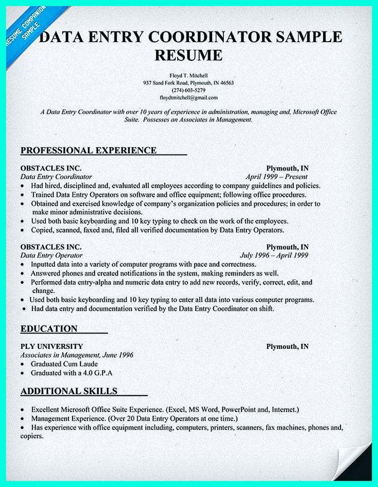 resume template format computer operator data entry sample 81