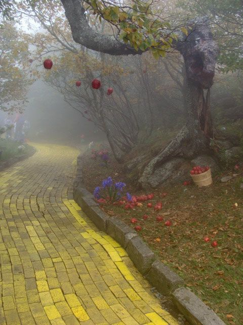 Down the Yellow Brick Road. I adore this image. Look closely at the left side, and you'll see Dorothy and friends disappearing into the fog.