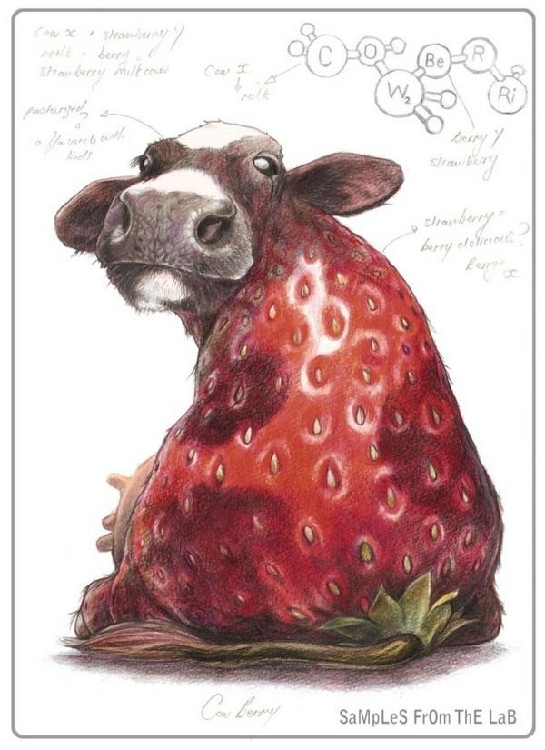 设计  慨念 萌 CowBerry. XD  Cow hybrid, cow, cute, kawaii, cute cow, animal fruit, hybrid, how to draw hybrid animals, hybrid animals